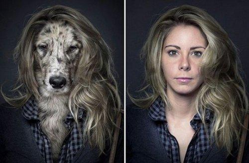 Собаки, одетые как их владельцы (8 фото)