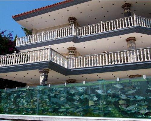 Забор в виде аквариума (4 фото+видео)