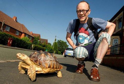 Заботливый мужчина ежедневно и в любую погоду выгуливает свою черепаху
