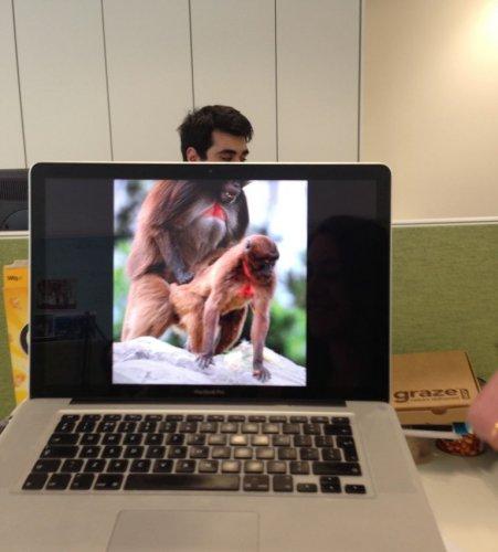 Юмор: Новое развлечение офисных работников (29 фото)