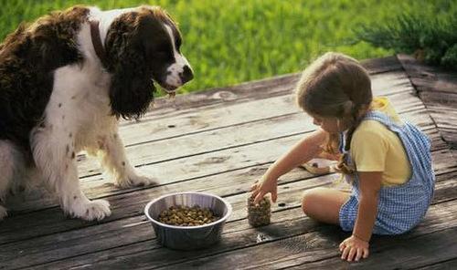 Дети очень любят животных (32 фото)