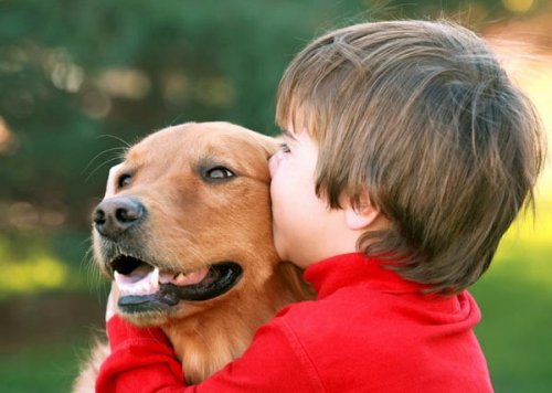 Это интересно: 7 неожиданных особенностей, которые роднят человека с животными
