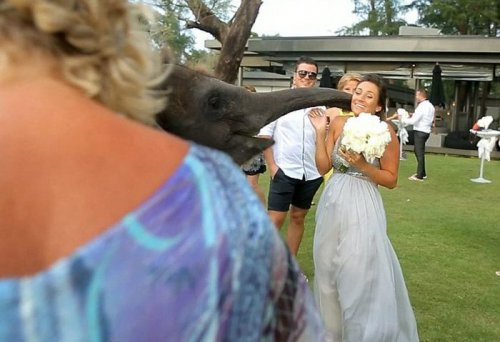 Горячий поцелуй (7 фото)