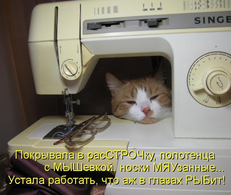 Смешные картинки про шитье одежды