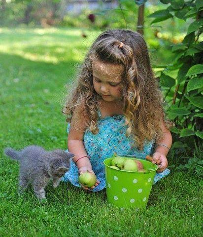 Любовь малышей к животным (30 фото)