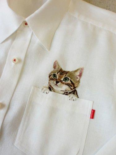 Котики на карманах рубашек (13 фото)