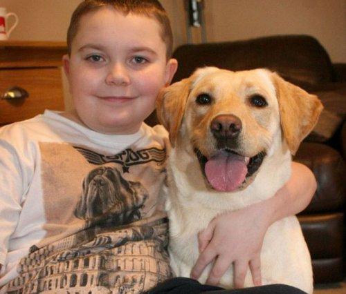 Умный пёс научился заботиться о больном мальчике