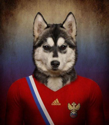 Юмор: Игроки Чемпионата мира по футболу