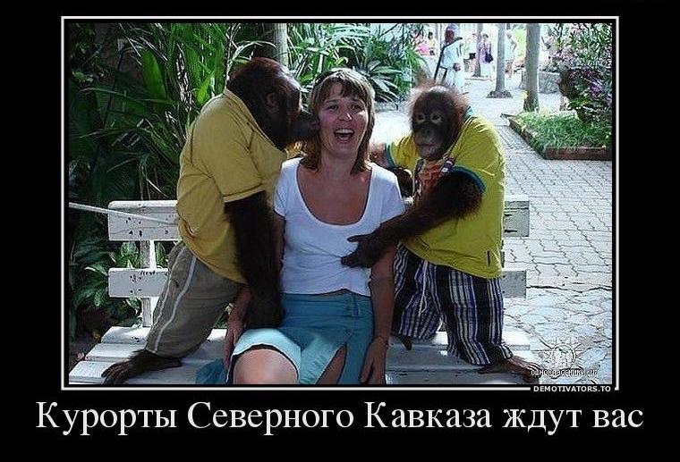 Кавказский юмор на картинках