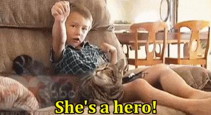 Кот спас ребёнку жизнь