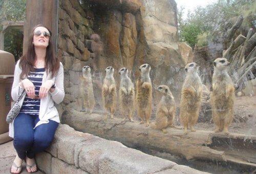 Забавные фотографии из зоопарков (18 фото)