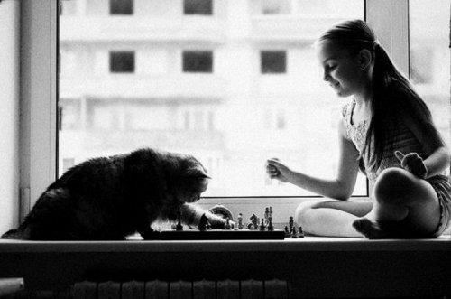 Дети и кошки (31 фото)