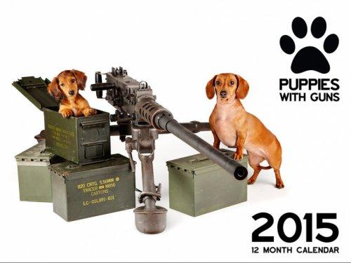 Календарь щенки с оружием (14 фото)