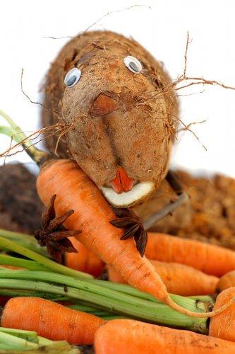 Очаровательные скульптуры зверушек из овощей (13 фото)