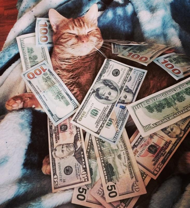 Картинки с деньгами смешные, ночи любимый