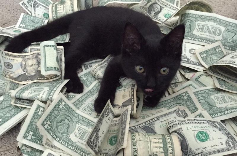 Картинки с деньгами смешные, комсомолом картинки новогодняя