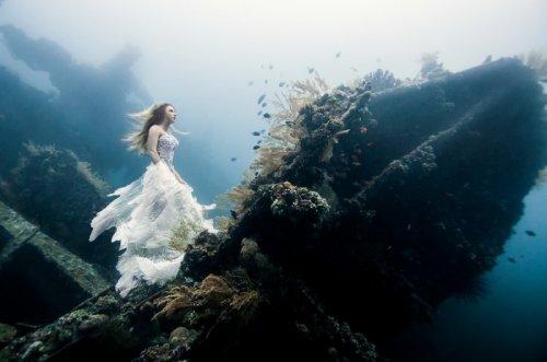 Лучшие подводные фотографии (11 фото)