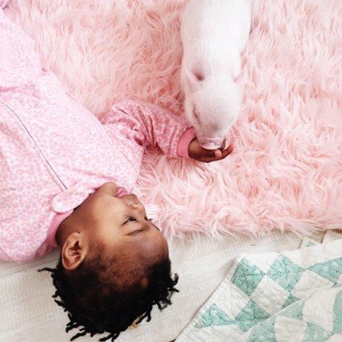 Трогательная дружба маленькой девочки и 3-месячного поросёнка (18 фото)