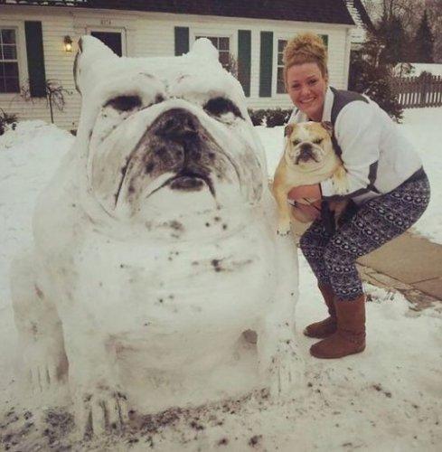 Снеговики, похожие на собак и кошек (11 фото)