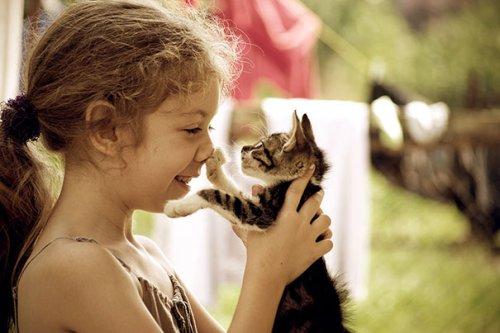 Милые малыши и кошки (34 фото)
