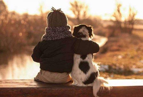 Трогательная дружба мальчика и трёх собак (10 фото)
