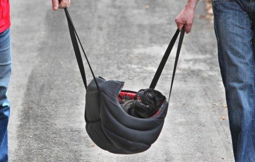 Сумасшедшие идеи для транспортировки мопсов (10 фото)