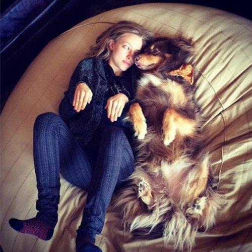 Юмор : Животные и их хозяева, которые нашли друг друга (15 фото)