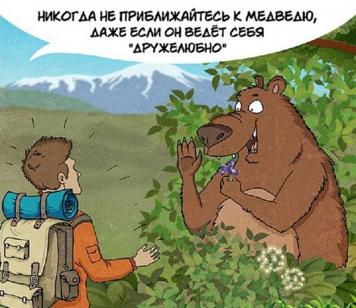 10 правил поведения при встрече с медведем (10 фото)