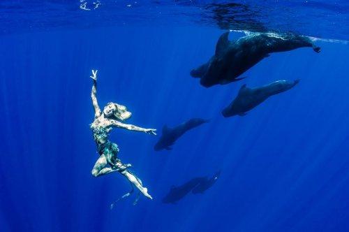 Подводные танцы с китами (9 фото)