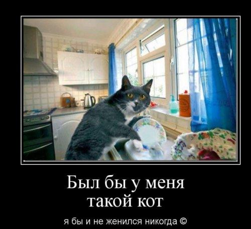 Демотиваторы для хорошего настроения! (35 фото)