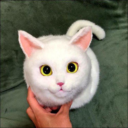 Сумки в виде кошек (9 фото)