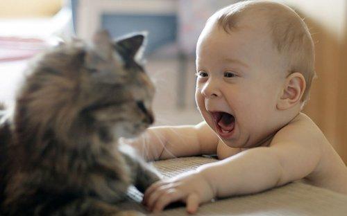 Малыши и домашние питомцы (33 фото)
