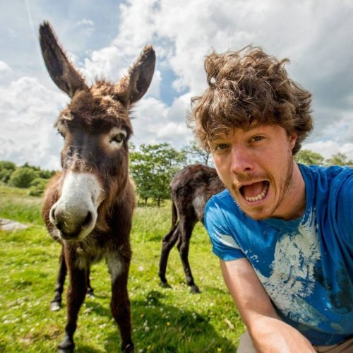 Селфи с животными, которые делает Аллан Диксон во время путешествий (11 фото)