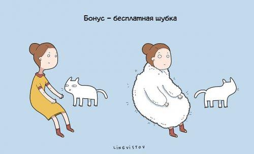 Юмор: Преимущества жизни с котом