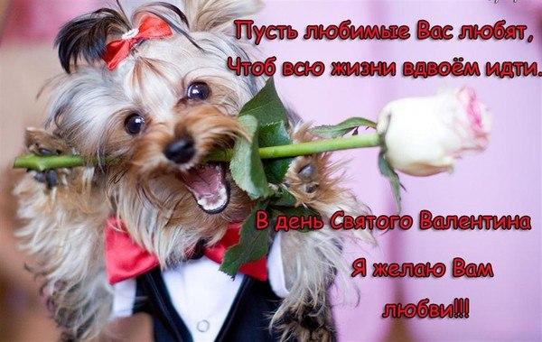 Поздравления с днем валентина семью