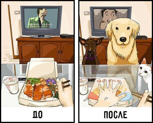 Как меняется жизнь когда в доме появляется собака (9 фото)
