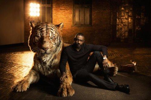 Новая книга джунглей: актеры фильма рядом с животными, которых они озвучивали (6 фото)
