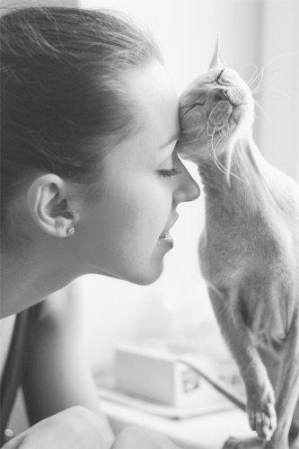 Классные фотографии любительниц кошек со своими питомцами (33 фото)