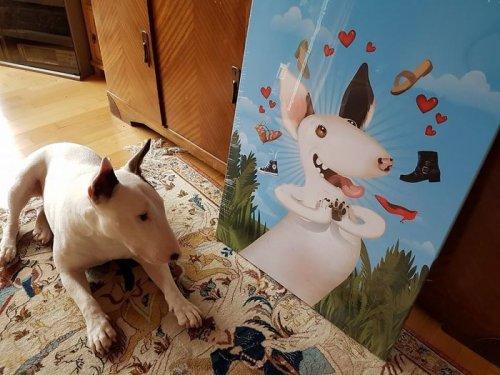 Новые иллюстрации домашних любимцев, созданные Крисом Битоу (13 фото)