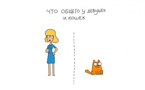 Юмор:Отличный мультфильм – «Что общего у кошек и девушек?»