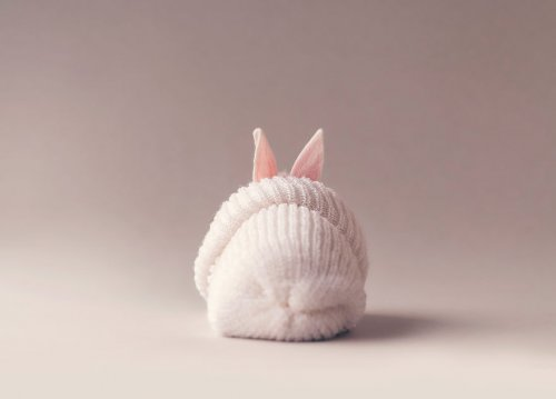 Милая фотосессия для новорождённого кролика (12 фото)