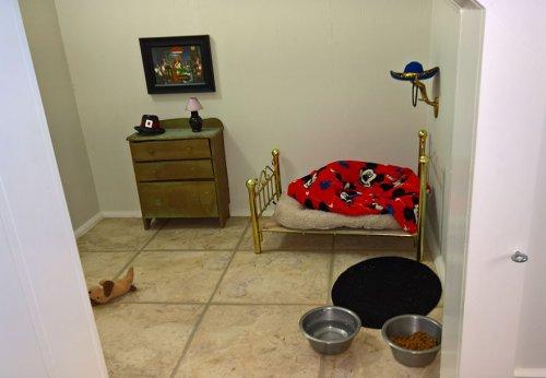 Симпатичная комната для чихуахуа под лестницей (4 фото)