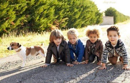 Наши милые друзья-собаки! (30 фото)