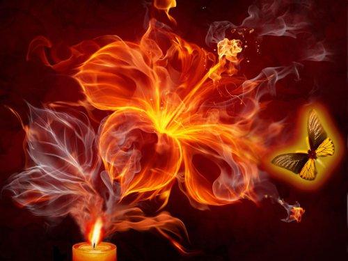 Персидская притча: Бабочки и огонь