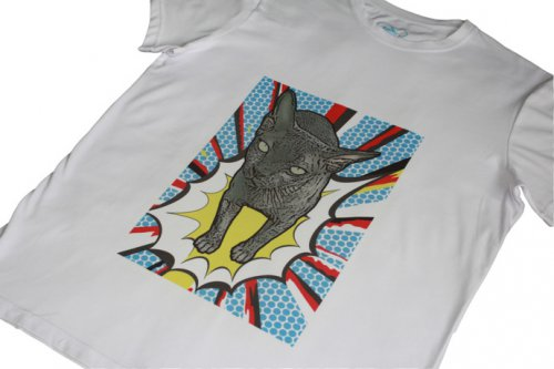 Новые Поп-арт футболки помогут животным в России.