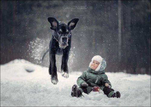 Маленькие детки и огромные собаки (15 фото)
