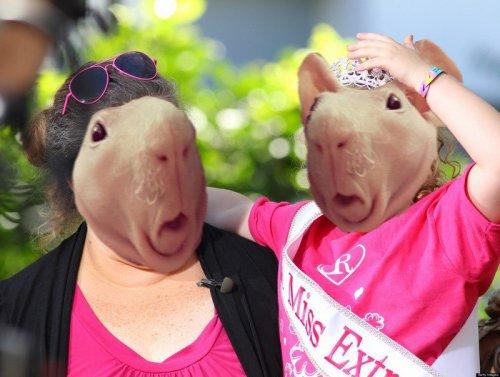 Удивлённая голая морская свинка и фотожабы на неё (21 фото)