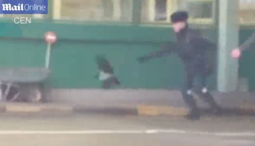 Как ворона украла у эстонца паспорт на российской границе