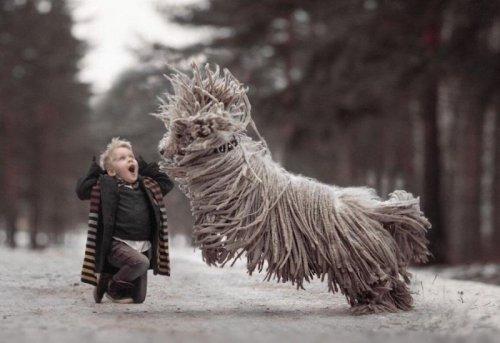 Милые и забавные животные (30 фото)