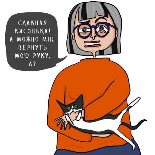 Юмор : Маленькие безумства, которые совершают абсолютно все котовладельцы